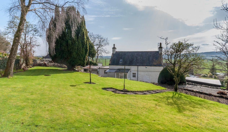 Ash Cottage Garden 2
