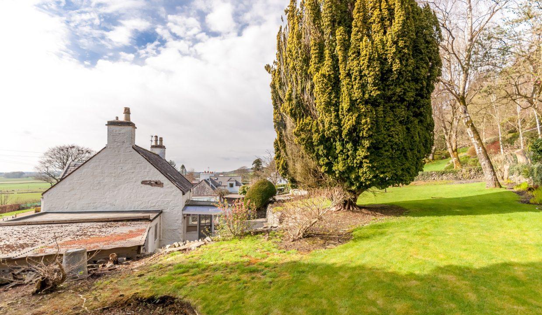 Ash Cottage Garden 3