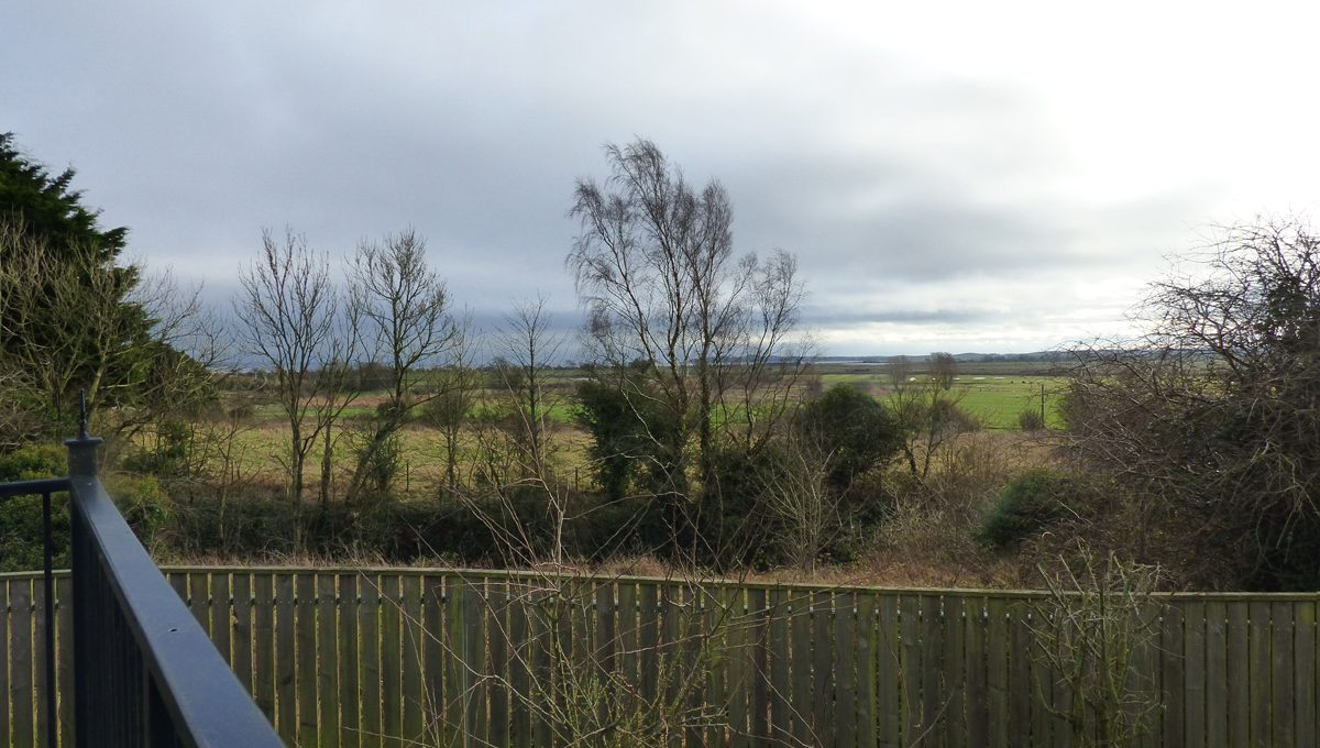 Causbie Wigtown View