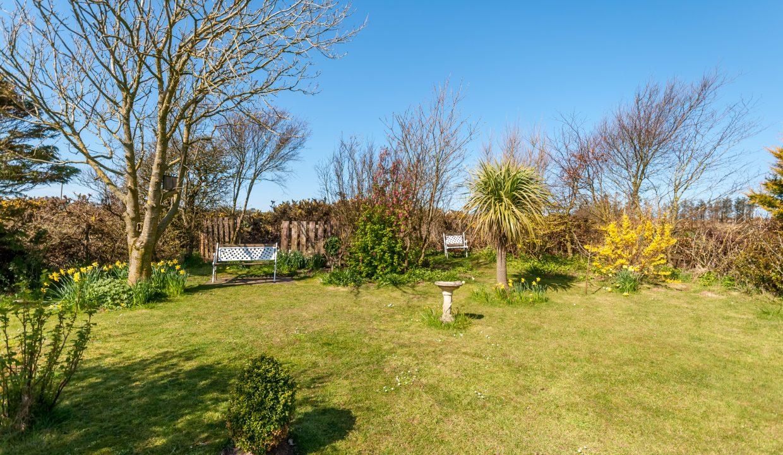 Glen Auchie Garden 6