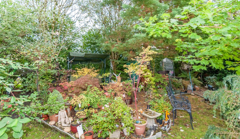 Lisieux Garden 6