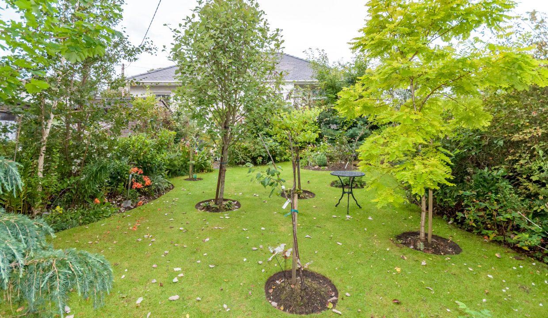 Lisieux Garden 7