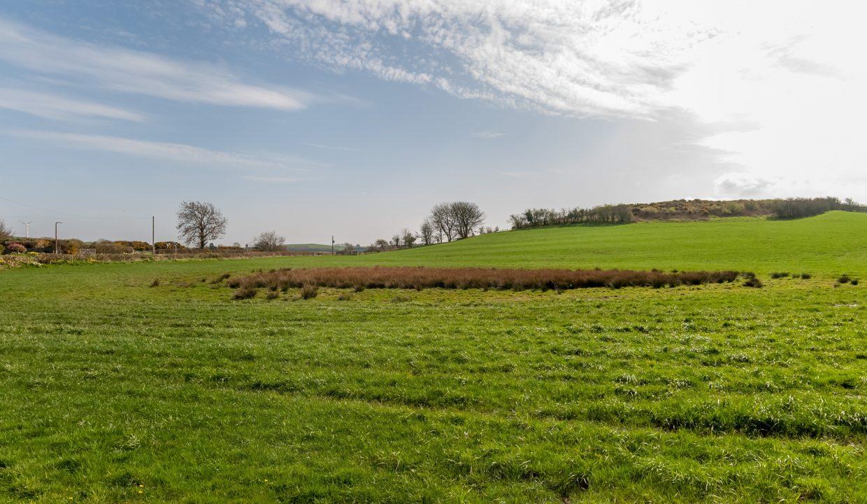 Southfield View