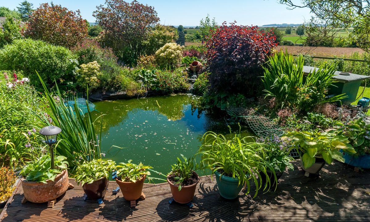 Tyndruim Garden 7