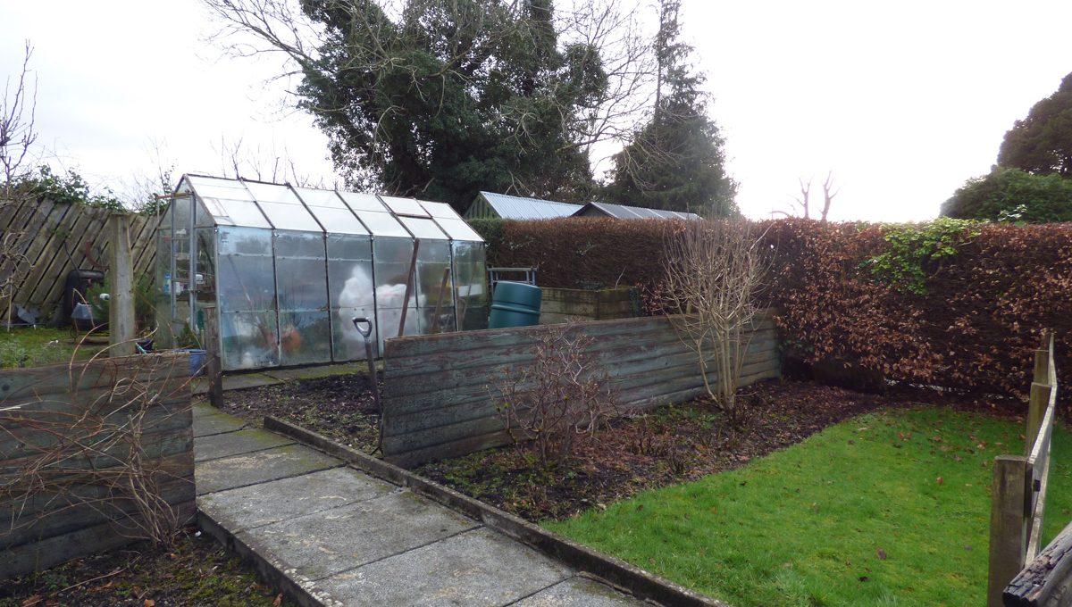rear end garden1